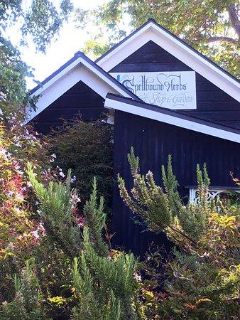 Spellbound Herb Gift Shop and Garden: exterior of Spellbound from its garden