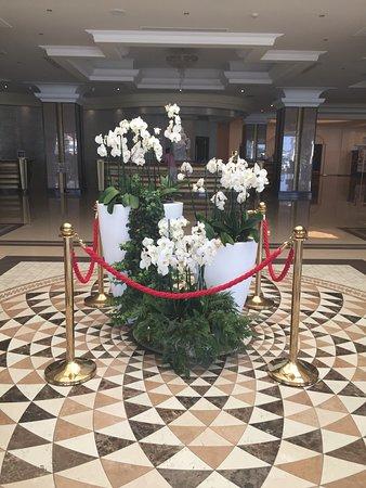 Elysium Resort & Spa: reception area/foyer