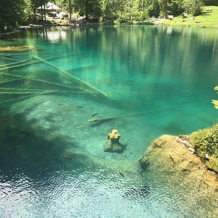 Blausee-Mitholz, Switzerland: Türkis farbenes Wasser wohin man schaut!