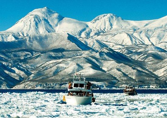 ゴジラ岩観光 - 日帰りツアー (知床の東側), 冬のバードウォッチング