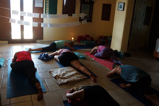 Island Yoga Flow : The room breathes in a unison.