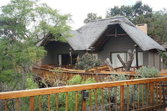Entabeni Game Reserve, África do Sul: Rooms with a view!!!