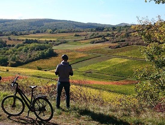 La Vélo Vie: Tours guidés à vélos sur les vignes de la Côte de Beaune, Bourgogne.