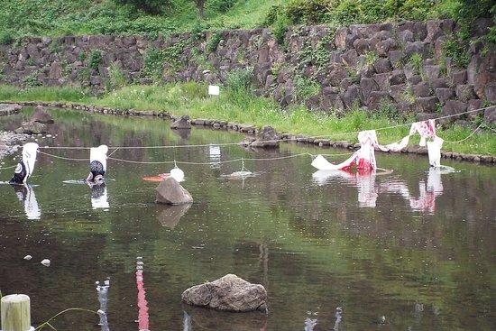 Chigasaki Satoyama Park: 鯉のぼりは、もう片付けの途中でした。
