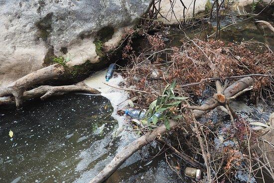 Cascades d'Akchour: Immondices dans la rivière
