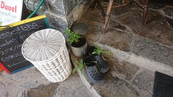 Mediterranean Cafe Snack Bar : Plants in the 'crocs'... Don't get that at many bars!