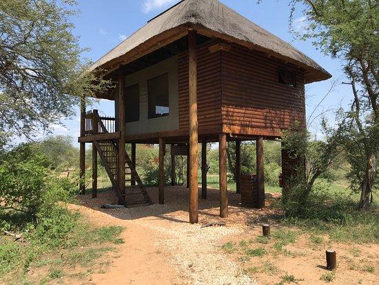 nThambo Tree Camp照片