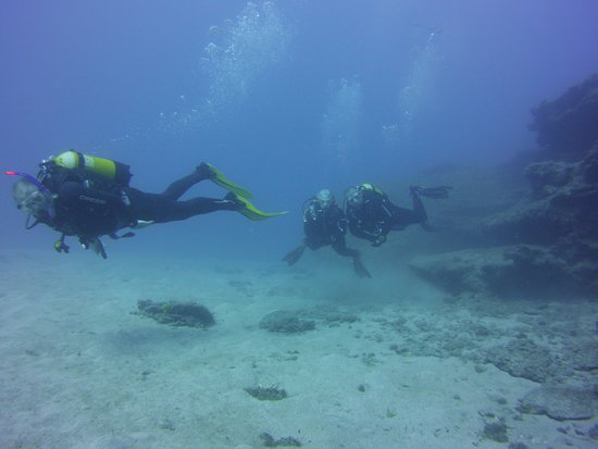 Top Diving Gran Canaria: Diving around Balito Reef