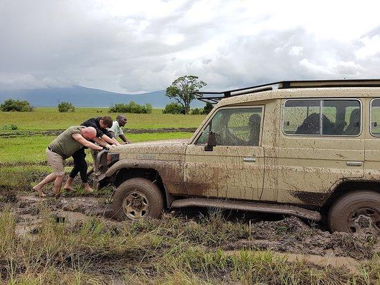 Moshi, แทนซาเนีย: Udder incompetence