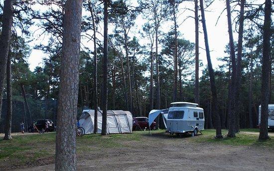 Peguerinos, Espanja: Zona de acampada libre