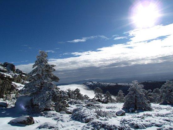 Peguerinos, Spain: Entorno del camping en invierno