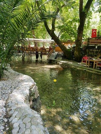 Antalya İli, Türkiye: 20180601_123700_large.jpg