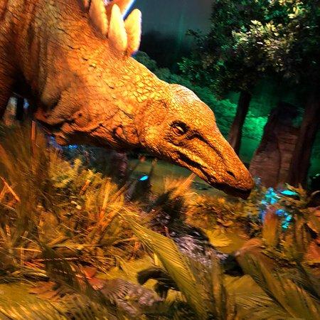 Jurassic World : Magnifique