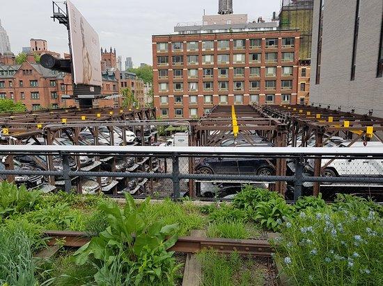 Ảnh về The High Line