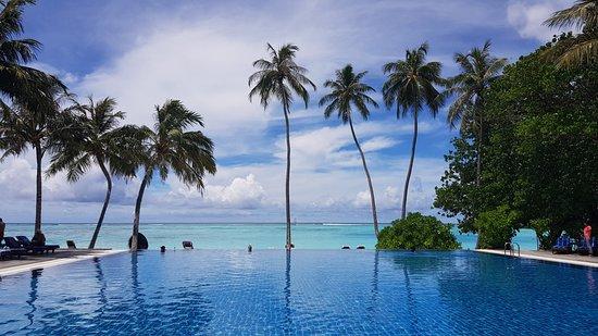 Meeru Island Resort & Spa : Adult pool