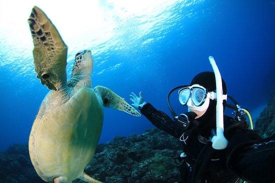 Rafu Dive Works
