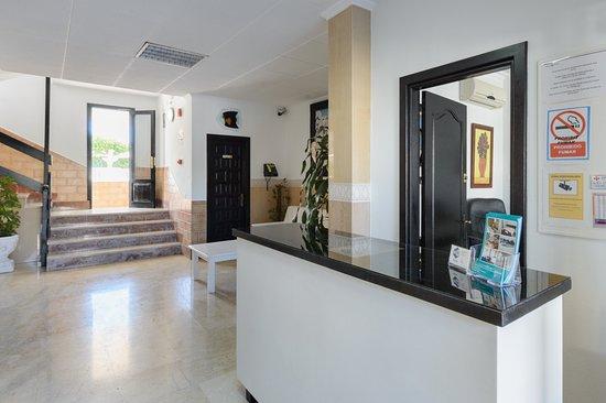 Apartamentos San Antonio Beach: Recepción apartamentos
