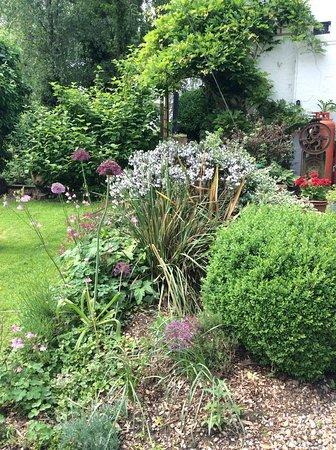 Branston, UK: Garden