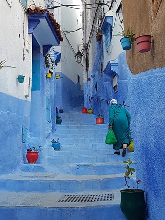 写真Morocco Countryside Tours枚