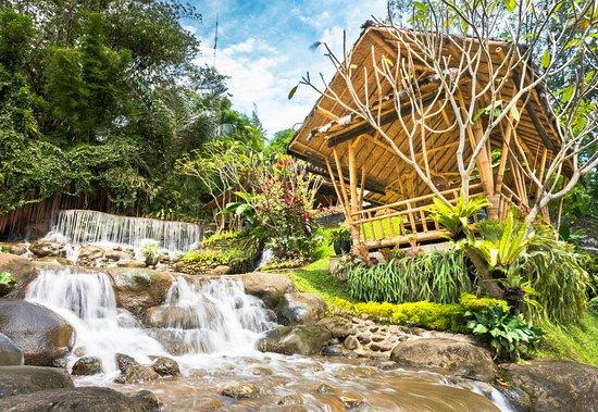 Gurih 7 Bogor: Suasana Pedesaan dan Air Terjun