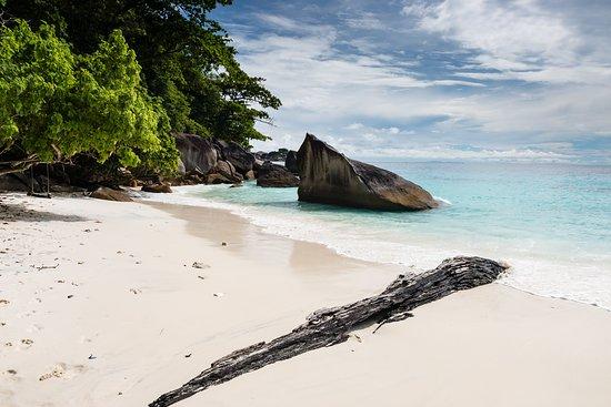 Similan Diving Safaris: Similan island
