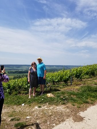 Champagne Day Trip to Veuve Cliquot and Family Winery including Lunch from Reims: Vineyard View