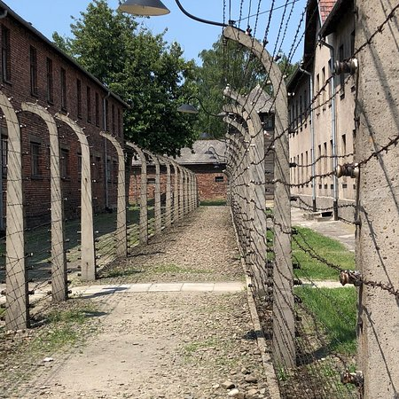 Auschwitz-Krakow Tours: Just a few photos from our day won't post many as people need see it themselves to realise the h