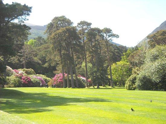 Muckross House, Gardens & Traditional Farms: Gorgeous grounds at Muckross Gardens