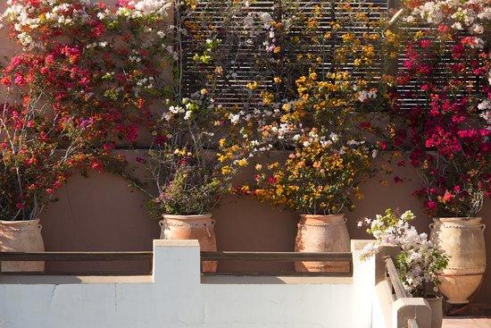 Les Jardins de la Medina: Terace-Terrasse Les Jardins de la Médina