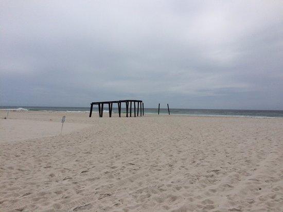 Inlet Beach, FL: Beach at park