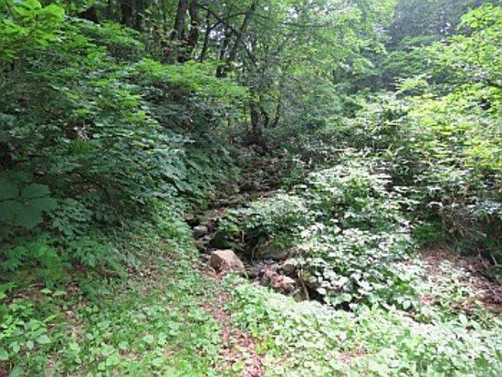 Kyu Sasaya Kaido Yuhodo Course: 沢を渡ります