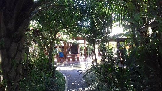 Warung Dedari: Mooie planten en veel groen.