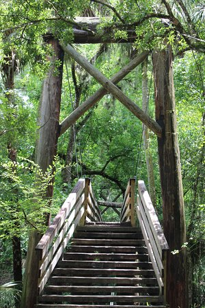 Hillsborough River State Park: This suspension bridge is attractive and gives a good view of the river.