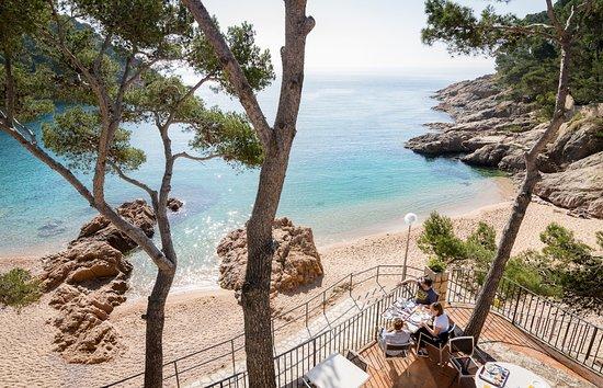 Restaurant Es Portio (Hotel Hostalillo): Dining room with panorama to Tamariu