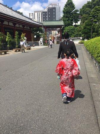 Tokyo Sakura Photo