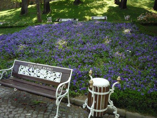 Gulhane Park照片