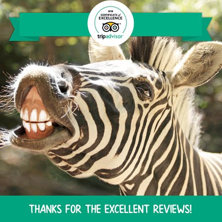 Roger Williams Park Zoo: THANK YOU for being a Zoo supporter!