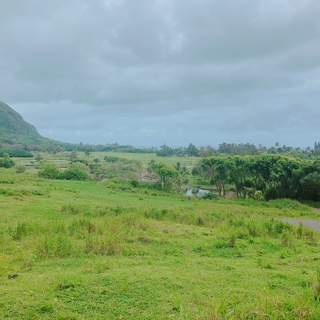 Kaneohe, HI: photo6.jpg
