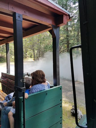 Fish Camp, Californien: Letting out STEAM!