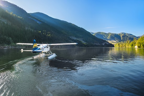 Sechelt, Canada: Beaver on the water in Hotham Sound