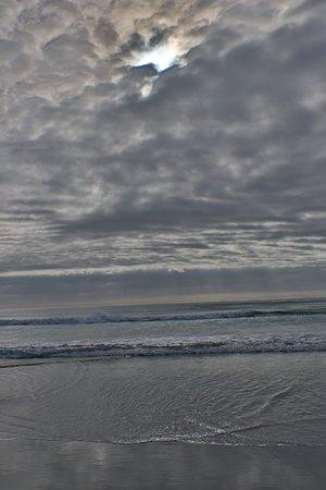 Denison Beach: The shy was amazing!