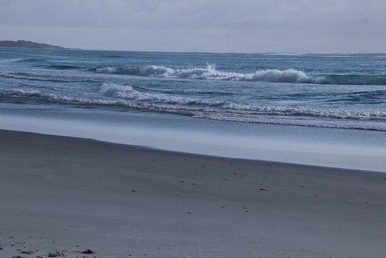 Denison Beach: Waves
