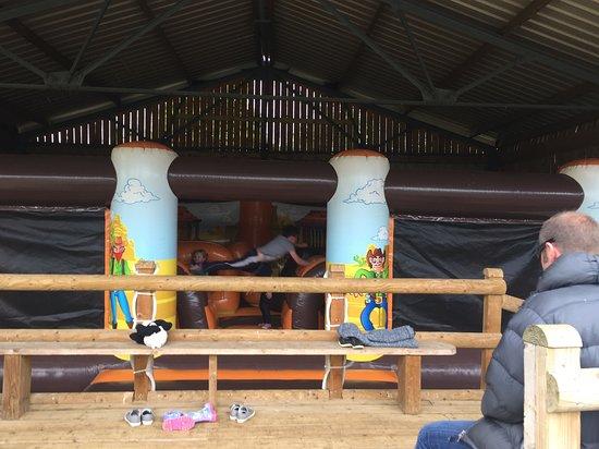 Dorset Heavy Horse Farm Park: Bouncy Castle