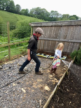 Dorset Heavy Horse Farm Park: The staff really interact with the kids to ensure they have a great experience