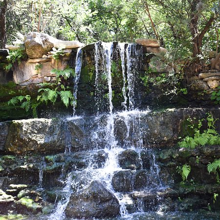 Zilker Botanical Garden