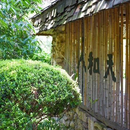 Zilker Botanical Garden照片