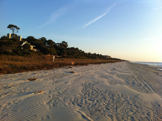 Hilton Head, SC: Nothing finer than Sea Pines Beaches