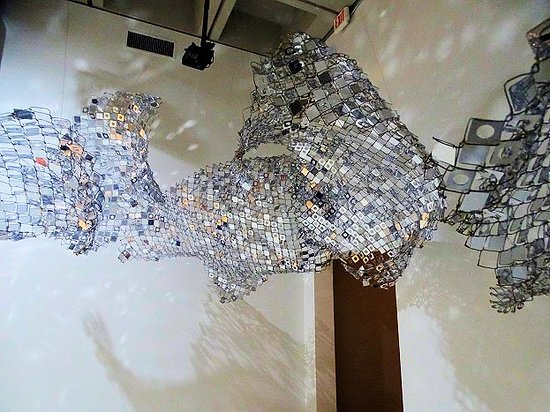 North Carolina Museum of Art: Light, Color, and Sound Experiences