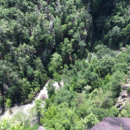 Fotografia de Tallulah Gorge State Park