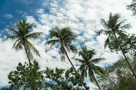 Lia Beach - Bamboo Resort: Lia Beach typical landscape